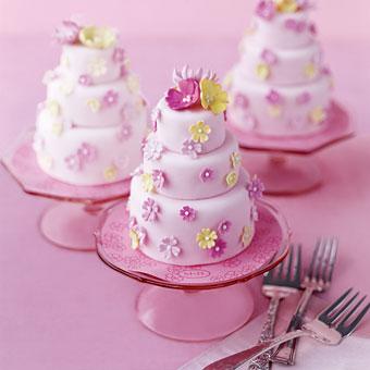 Mini Tiered Cake Baking Set 3 Pans 7 Decorating Tips Amp 1