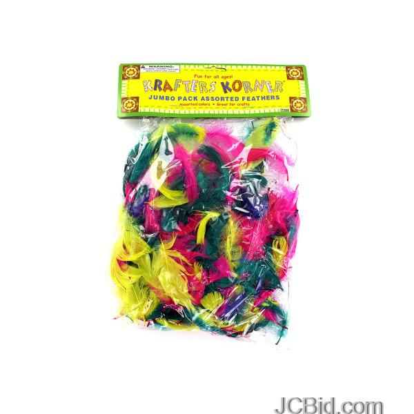 JCBid.com Colorful-Craft-Feathers-display-Case-of-96-pieces
